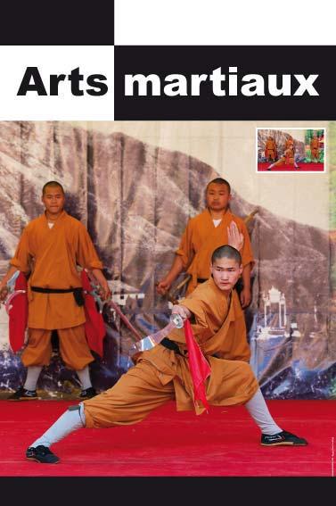 Exposition arts martiaux for Art martiaux
