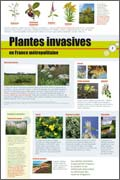 exposition Plantes invasives en France métropolitaine