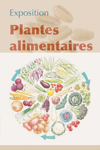 Exposition Plantes alimentaires