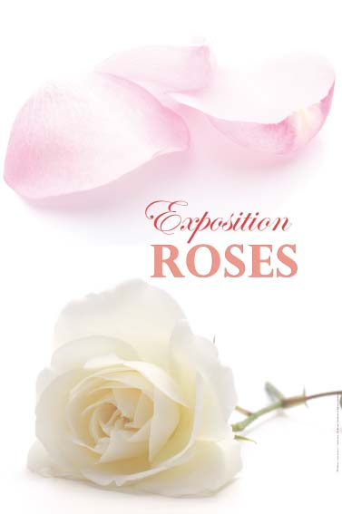 Exposition roses rosiers,