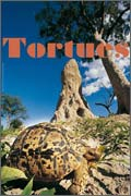Exposition Tortues